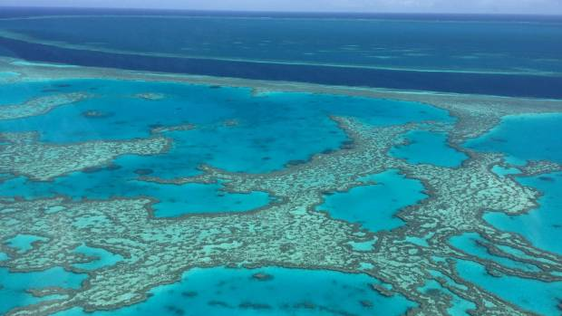 Great Barrier Reef is coming under increased scrutiny from Unesco. Profits from the Good Beer Company will go towards ...