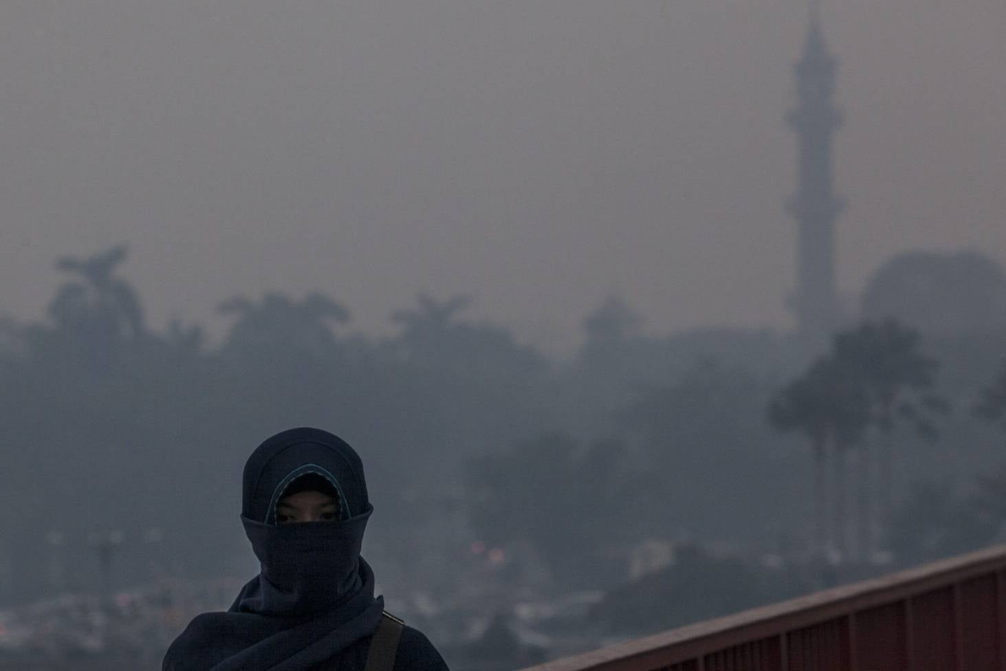 Disaster has put Indonesia top of carbon emissions charts