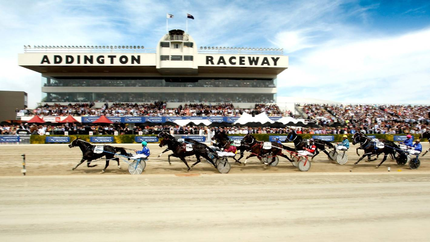 What Happened In New Zealand Image: As It Happened: New Zealand Trotting Cup Day At Addington