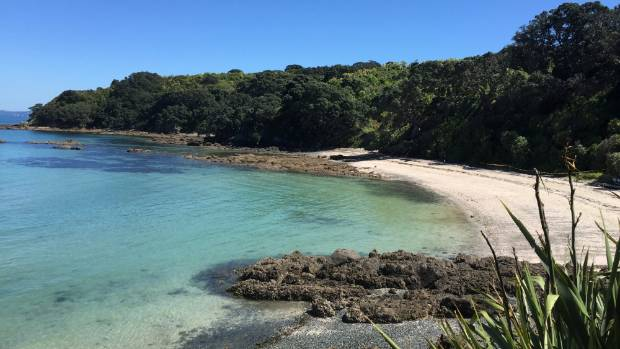 A trip out to Tiritiri Matangi is expensive, but it's an adventure the kids won't forget in a hurry.