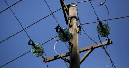 1130 homes in west Auckland are without electricity due to a tree falling on power lines.