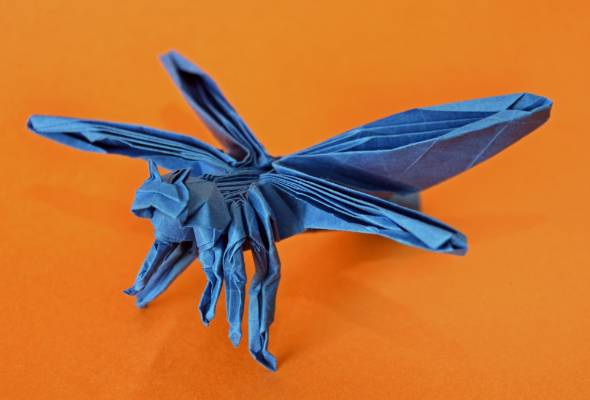 Origami insect, by Joseph Sime.