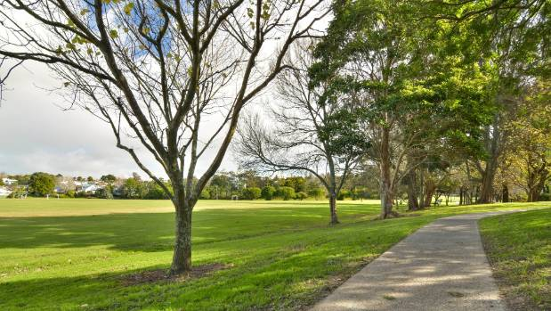 More than $100,000 is being cut from the Maungakiekie-Tamaki Local Board's parks maintenance budget.