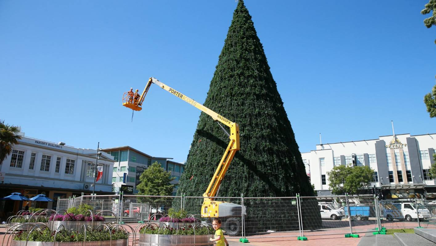 Hamilton has the biggest Christmas tree in New Zealand ...