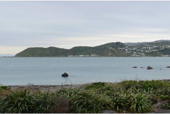 The existing view from 48 Moa Point Rd.