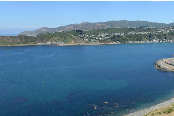 The existing view from Palmer Head.