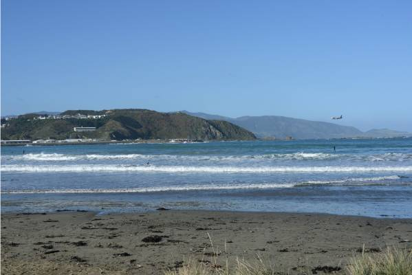 The existing view from Promenade, Lyall Bay.