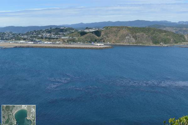 The view from Te Raekaihau Point with an extended runway.
