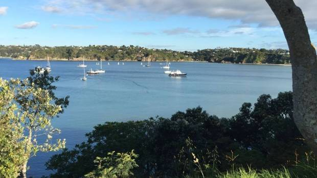 Waiheke's Oneroa Bay where Johnson drove the Thundercat at excessive speed while intoxicated.