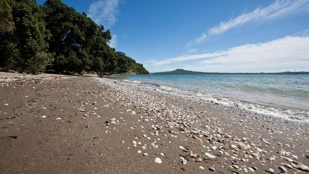 My Favourite Auckland Swimming Spots