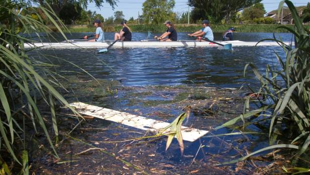 A rowing team at Kerrs Reach on the Avon River with a lot of debris in the water.