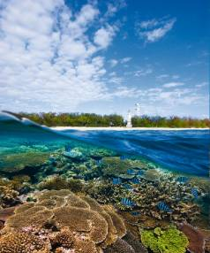 Lighthouse at Lady Elliot Island, Australia.