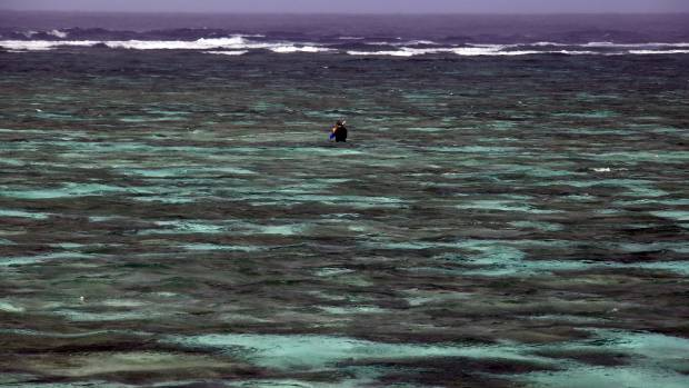 A tourist snorkels in the lagoon located on Lady Elliot Island