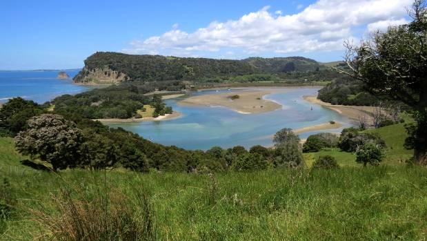 Te Muri and Mahurangi Regional Park