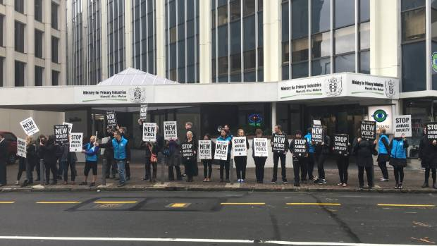 SAFE protesters outside the Ministry of Primary Industries building in Wellington.