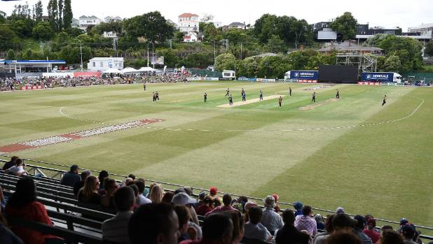 Auckland Cricket trialling live streaming of home domestic ...