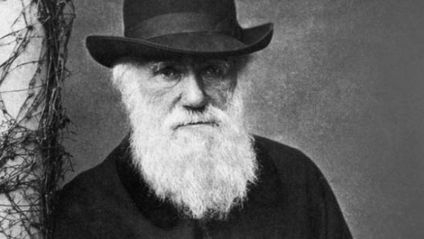 charles darwin theory of evolution should be taught in schools How can evolution be taught in schools as a fact, or at best, a firmly-grounded theory the reason for this stems from a battle between two opposing worldviews just as creation is the foundation for christianity, evolution is the foundation for the philosophy of humanism.