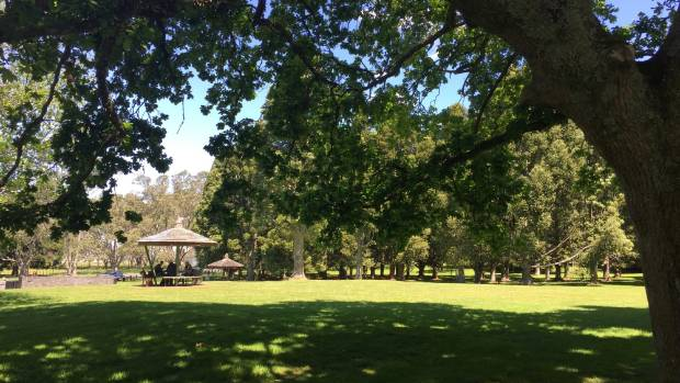 Cornwall Park features picnic tables aplenty, perfect for a lazy Sunday afternoon.
