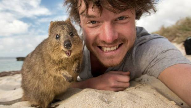 Allan Dixon with his favourite animal to photograph, the quokka.