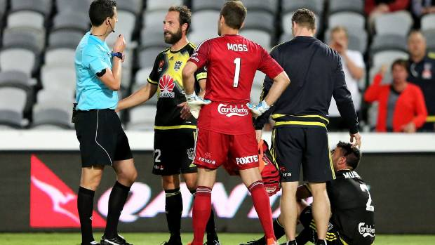 Phoenix captain pleads with referee Kris Griffiths-Jones after Roy O'Donovan headbutted Manny Muscat in their A-League ...