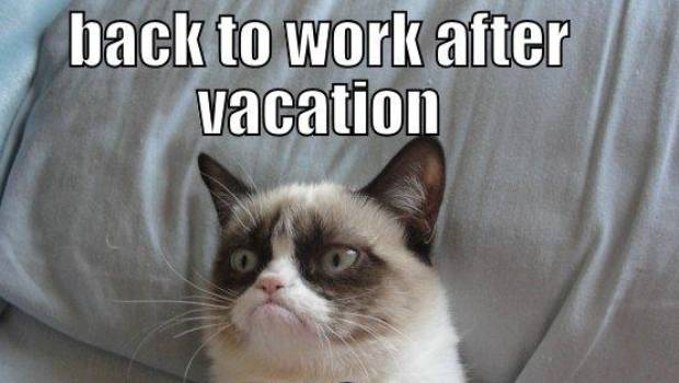 Back To Work : The 10 back to work memes that sum up how we really feel stuff.co.nz