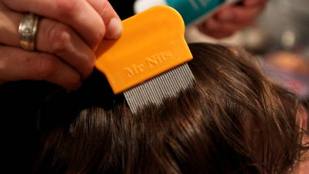 Appalling child neglect in Christchurch caused the worst case of head lice a doctor has seen in a decade. How can ...