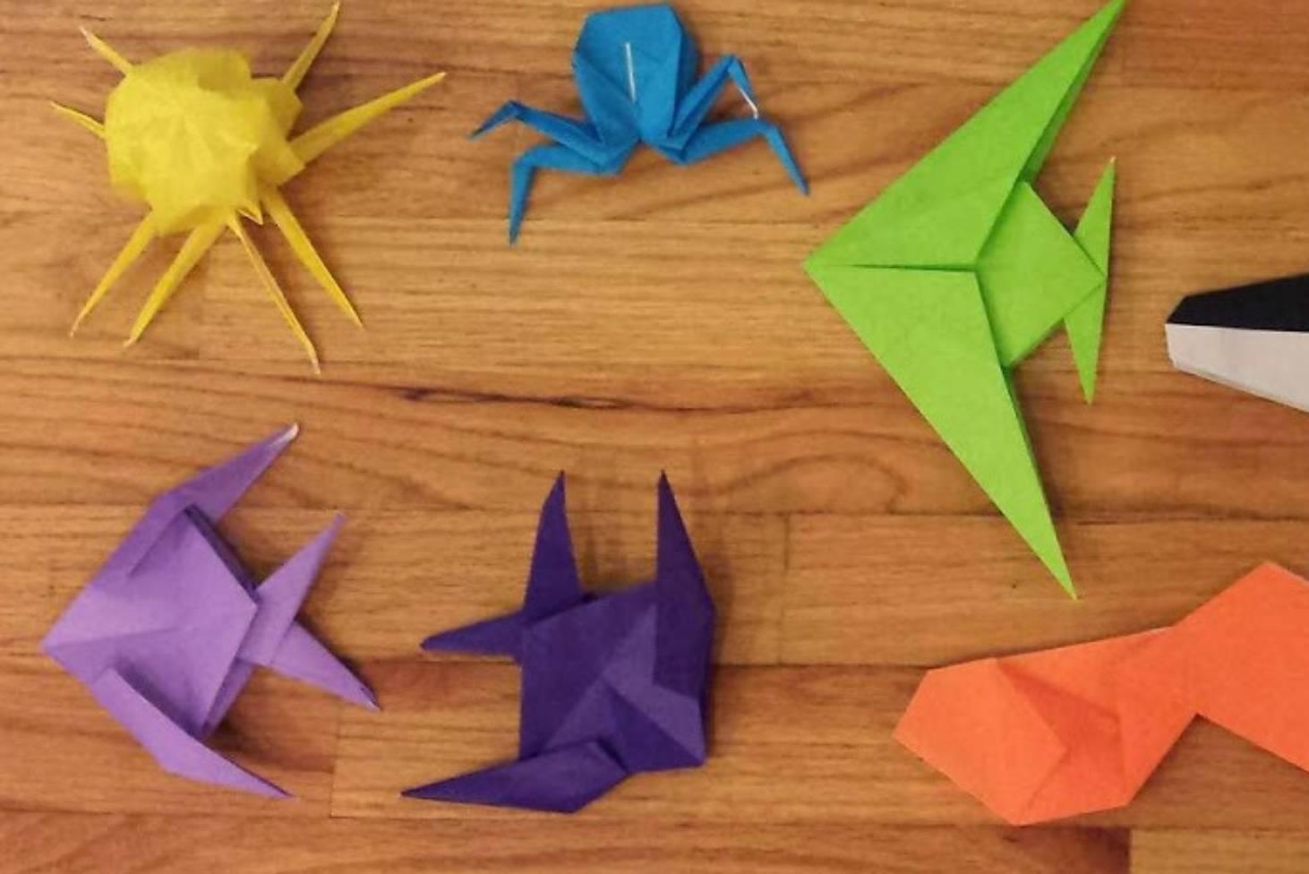 Origami Bird🐦 (simple) : origami   976x1462
