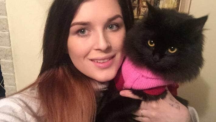 Palmerston North Cat Owner Faces Big Vet Bill After Pet Pam Shot Stuff Co Nz