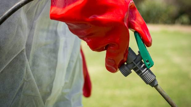 The Environmental Protection Authority says that when spraying glyphosate people should wear protective clothing, as per ...