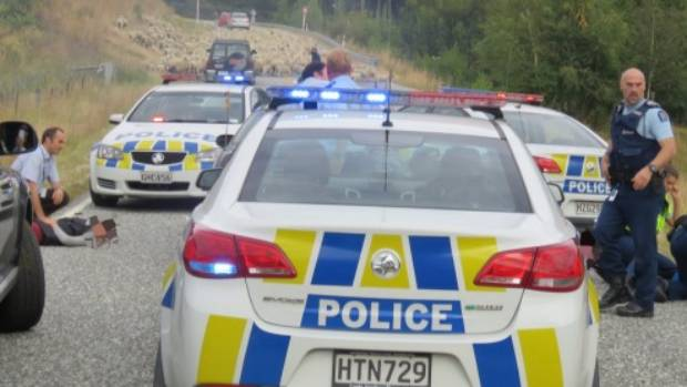 A flock of sheep stopped a 90-minute police chase where four people were arrested near Queenstown.