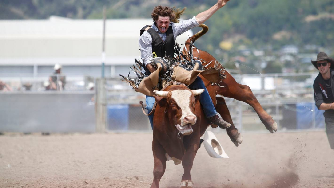 Death Of Bull At Richmond Rodeo Prompts Call To Ban