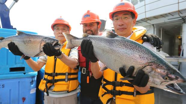 On board NZ King Salmon's Te Pungu Farm in Marlborough Sounds are (from left) NZKS Tokyo distribution representive ...