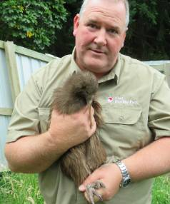 Queenstown's Kiwi Birdlife Park general manager Paul Wilson is the proud Dad of newly landed kiwi McMurdo who made the ...