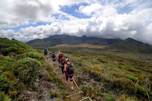 Hikers from the Venture Taranaki hosted guided walk along the Pouakai crossing make their way towards Holly Hut.