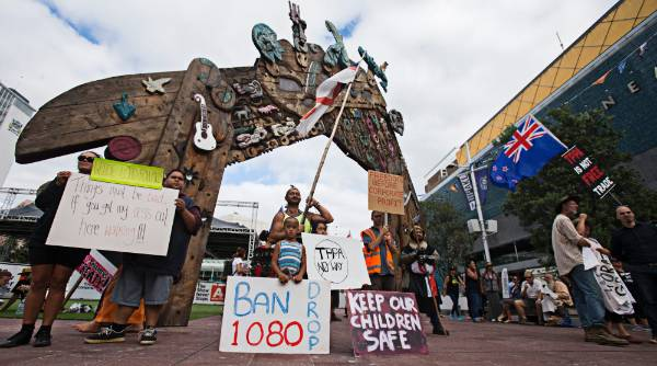 Protesters, with a variety of signs, gathered at Aotea Square on Thursday morning.