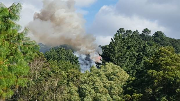 The scrub fire broke out on a hill behind Katherine Mansfield Drive in Upper Hutt.