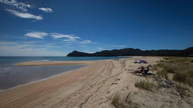 The beach for sale in Awaroa Inlet is surrounded by Abel Tasman National Park.