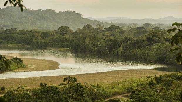 The Napo River runs through the Amazon Rainforest, delivering its watery lifeblood to the villagers living along its banks.