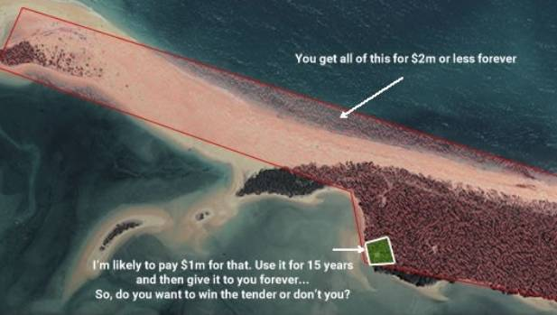 Gareth Morgan made a graphic to explain what he wanted - only some of the beach.