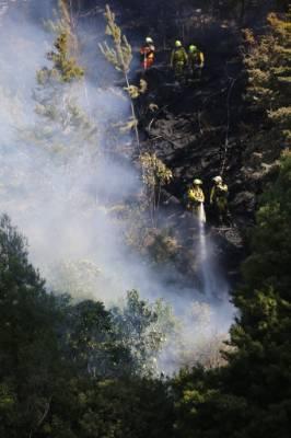 Firefighters battle a blaze in Upper Hutt.