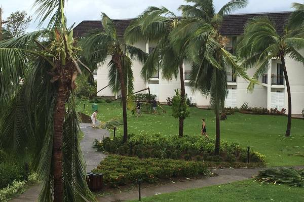 Staff at the Sofitel resort in Denerau begin cleaning up after Cyclone Winston.