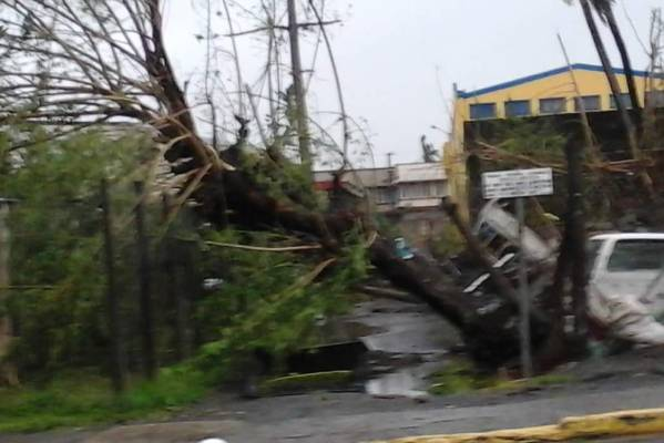 Damage caused by Cyclone Winston in the town of Tavua.