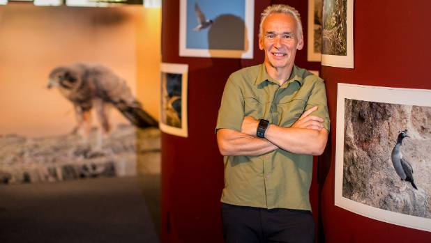 Timaru photographer Ron Lindsay with his exhibition of photos of New Zealand birds at the South Canterbury Museum.