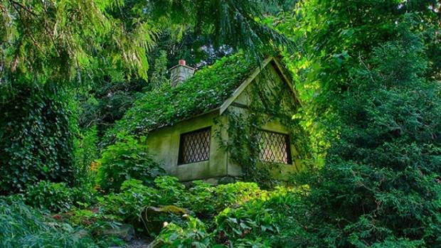 This Fairy Tale House In Canada Is A True Hansel And Gretel Cottage The Woods