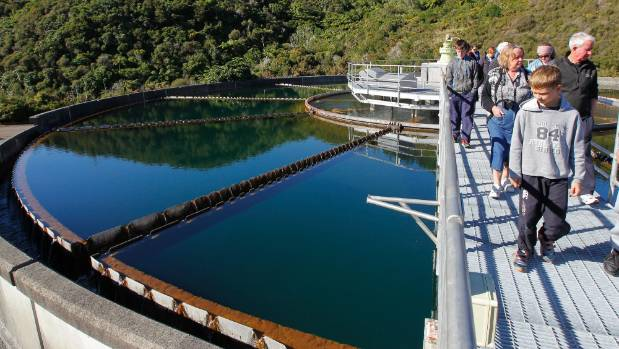 People visit the Te Marua Water Treatment Plant during an open day.