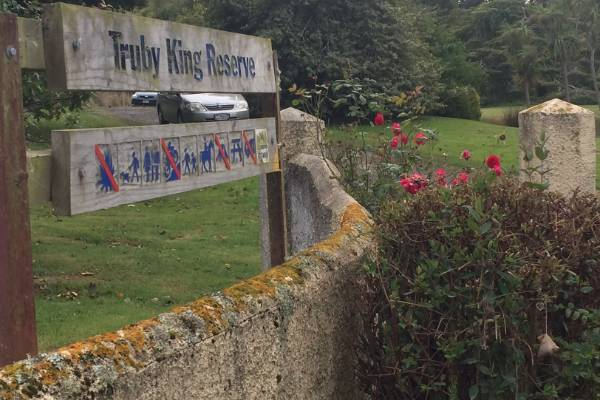 The incident happened near Truby King Reserve, north of Dunedin, about 8.20am on Tuesday.