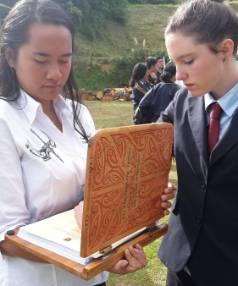 Waimarama Anderson and Leah Bell will present to the Maori Affairs select committee.