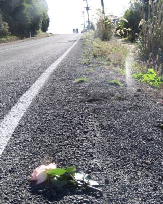 A flower was left at a police cordon after a 53-year-old woman was found dead at her Seacliff home on Tuesday.