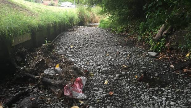 Locals used to drink from Waimairi Stream in Fendalton; now it is dry and littered with rubbish.