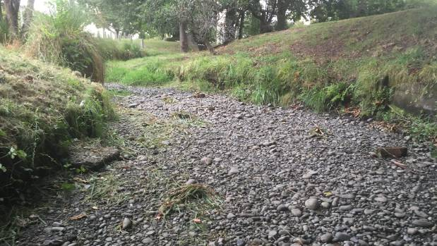 "Waimairi Stream doesn't have ""a teaspoon of water"" in it."